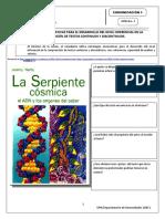 CL_GUÍA 3_ Estrategias para el desarrollo del nivel inferencial