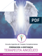 Programa Terapeuta Angélico