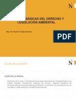 Nociones Basicas del Estado y Derecho Ambiental(1)