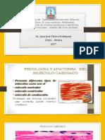Musculo Cardiaco Upao (1)