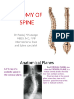 Spine Anatomy.pptx