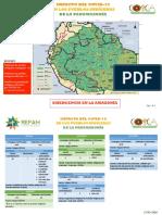 PUEBLOS INDIGENAS AFECTADOS POR COVID PANAMAZONIA-14.05.2020