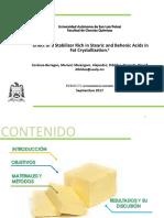 Dibildox.pdf