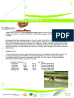 ZZ - Zamindara (RED RICE) Agro Products Manufacturers, Processors, Exporters, suppliers, traders in India FMCG company