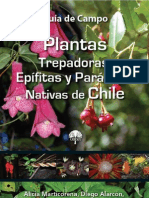 Plantas Trepadoras Epifitas Parasitas Nativas de Chile