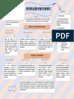 mapa conceptual observación participante