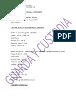 INFORME PERICIAL GUARDA Y CUSTODIA SOL Y  NATALY