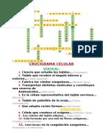 crucigrama de cta