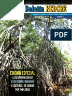 Boletin_REDCRE_13_2019_Edición especial.pdf