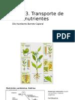 Transporte nutrientes