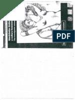 Alfarache Lorenzo (2003). Identidades Lésbicas y cultura feminista. Una investigación antropológica. CEIICH, Plaza y Valdés. México. Pp 129-182