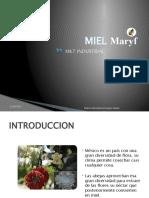 MKT Industrial.- Mercadotecnia de bienes y servicios. Miel Maryf