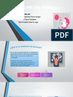 diapositivas ergonomia