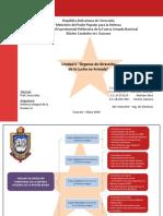 Unidad 2 Organos de Direccion de La Lucha No Armada