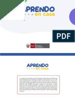 COMPETENCIAS SEMANA 1 APRENDO EN CASA.pdf