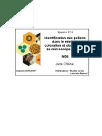Coloration-des-pollens
