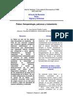 Fiebre.pdf 2009