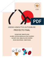 Proyecto Final AHAI- EMRV