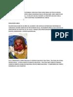 ARTICULO PANFACIAL CARTAGENA.docx