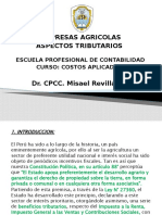 EMPRESAS AGRICOLAS-COSTOS APLICADOS