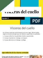 Visceras del cuello .pdf