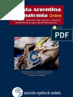 Revista Argentina de Anatomía Online 2010, Vol. 1, Nº 3, págs. 81-116.