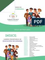 SABERES SECUNDARIA.pdf