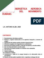 4 SISTEMA ENERGETICO AEROBICO OXIDATIVO 2020