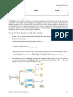 chapter 28 protists.pdf