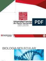Presentación_BioMolA