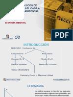 CONCEPTO BASICOS MICROPP.pptx