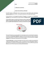 guia de apoyo.pdf