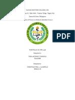 Alimpolo Portfolio.docx