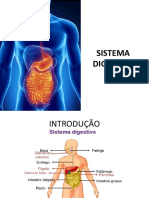SISTEMA DIGESTÓRIO - AULA 1