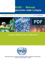 PML - ONUDI.pdf