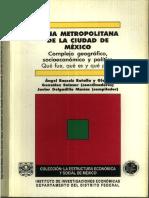JAVIER DELGADILLO ZMCM.pdf