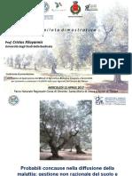 Gestione-pianta-e-suolo-Prof.-Cristos-Xiloyannis