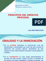 2° PRINCIPIOS DEL DERECHO PROCESAL LABORAL