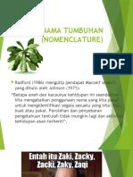 3. Tata Nama Tanaman dan simplisia.pptx