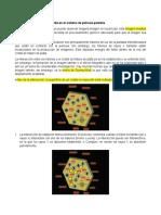 Formación de la imagen latente (Y).docx