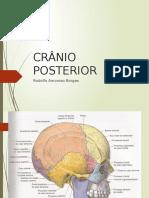 cranioposterior completo