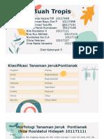 Kelompok 5_Nutrasetika_Jeruk Pontianak..pptx