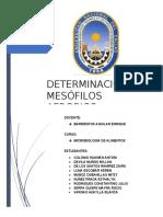 INTRODUCCIÓN_mesófilos[1]