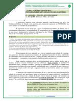 Ex Defensoria - Aula 05 - Danilea Jacques - 1 Parte