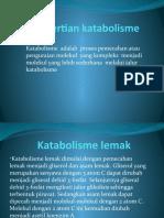 persentasi katabolisme
