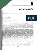 Metacognicion .pdf