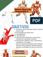 7 - MUSCULOS (2)