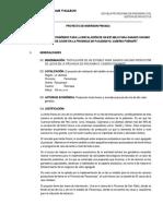 Proyecto Privado.pdf