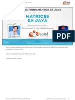 CFJ-A-Leccion-MatricesEnJava