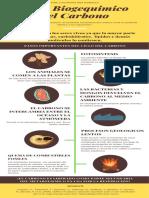INFOGRAFIA BIOGEOQUIMICA DEL CARBONO